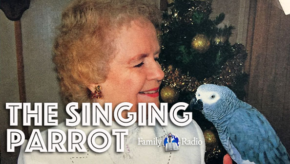 The Singing Parrot