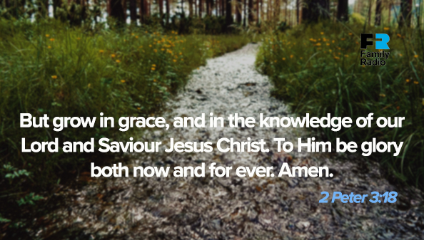 But grow in grace, and in the knowledge of our Lord and Saviour Jesus Christ. To Him be glory both now and for ever. Amen.