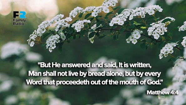 But He answered and said, It is written, Man shall not live by bread alone, but by every Word that proceedeth out of the mouth of God.