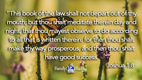 This book of the law shall not depart out of thy mouth; but thou shalt meditate therein day and night, that thou mayest observe to do according to all that is written therein: for then thou shalt make thy way prosperous, and then thou shalt have good success.