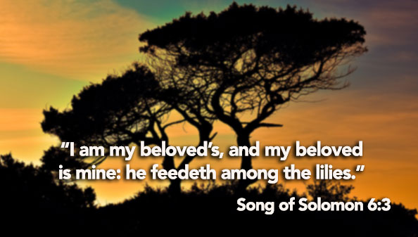 I am my beloved's, and my beloved is mine: he feedeth among the lilies.