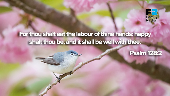 For thou shalt eat the labour of thine hands: happy shalt thou be, and it shall be well with thee.