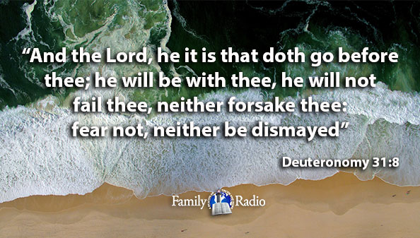 And the Lord, he it is that doth go before thee; he will be with thee, he will not fail thee, neither forsake thee: fear not, neither be dismayed.