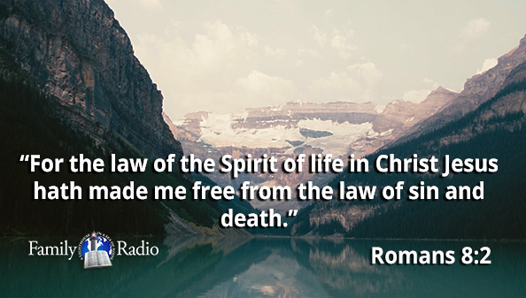 For the law of the Spirit of life in Christ Jesus hath made me free from the law of sin and death.