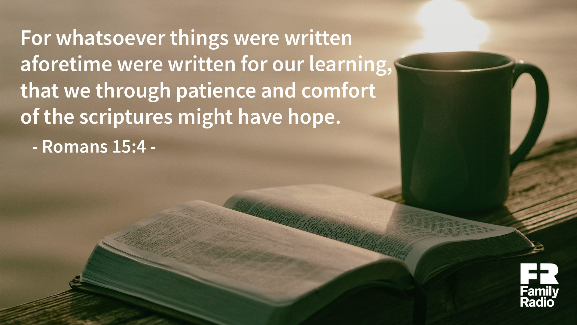 """For whatsoever things were written aforetime were written for our learning that we through patience and comfort of the scriptures might have hope."""