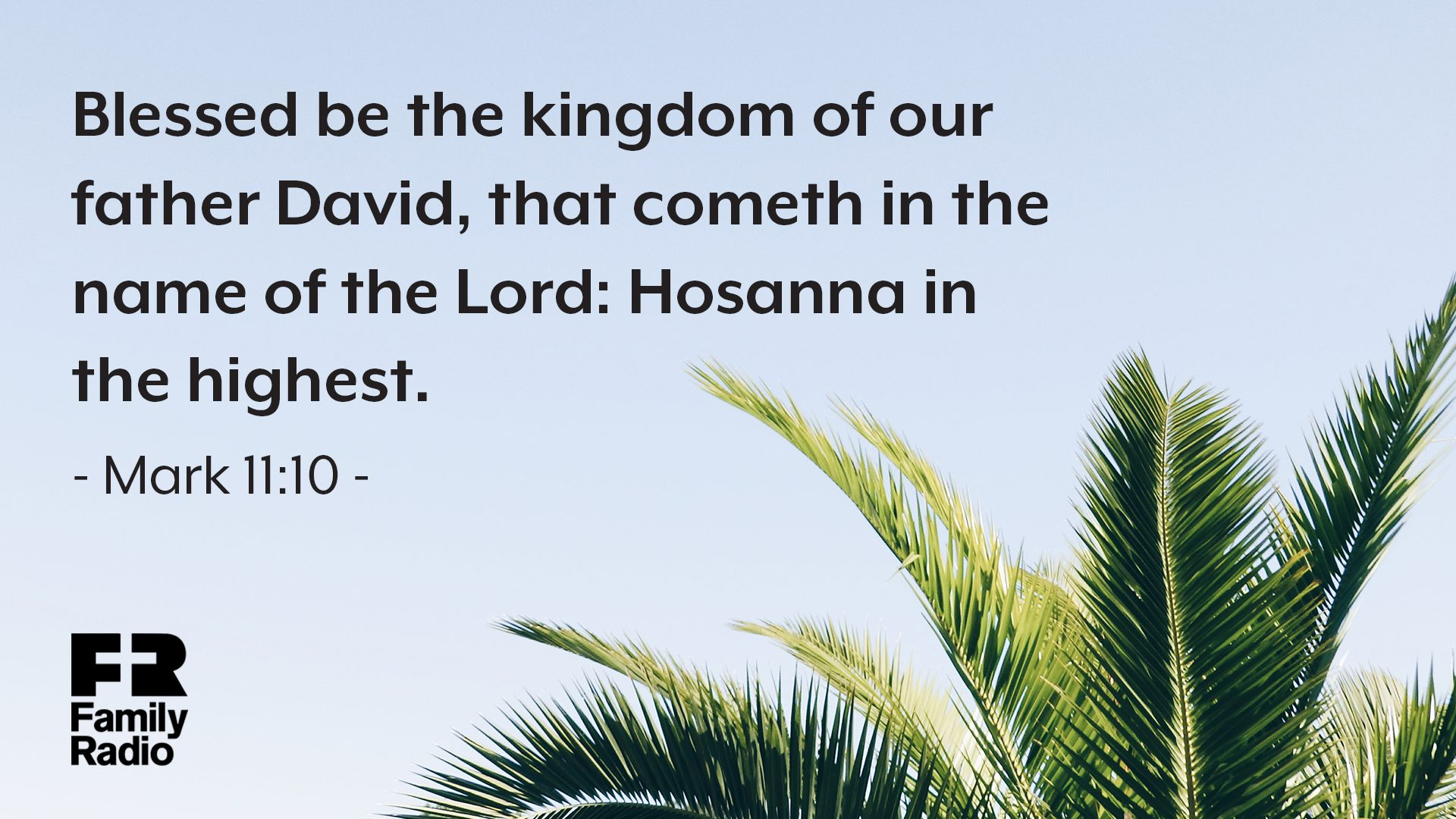 """Blessed be the kingdom of our father David, that cometh in the name of the Lord: Hosanna in the highest."""