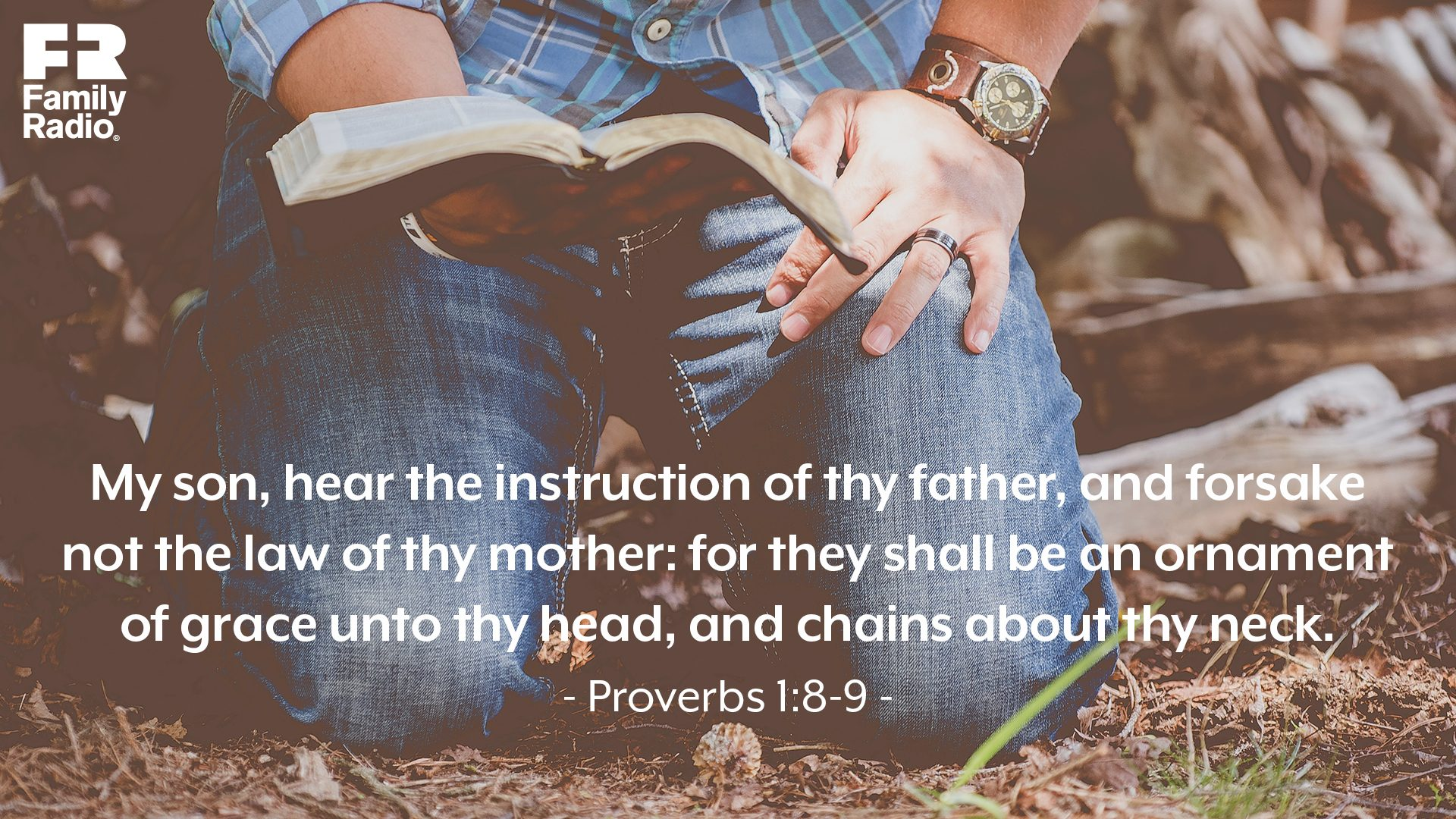 """My son, hear the instruction of thy father, and forsake not the law of thy mother: For they shall be an ornament of grace unto thy head, and chains about thy neck."""