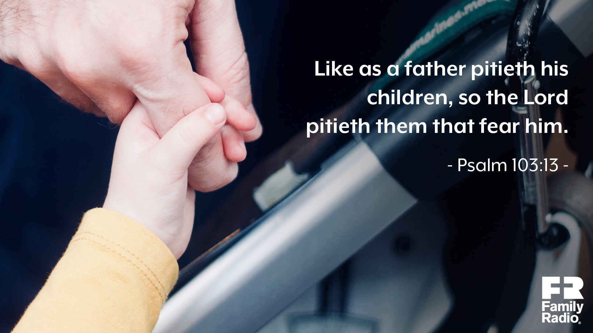 """Like as a father pitieth his children, so the Lord pitieth them that fear him."""