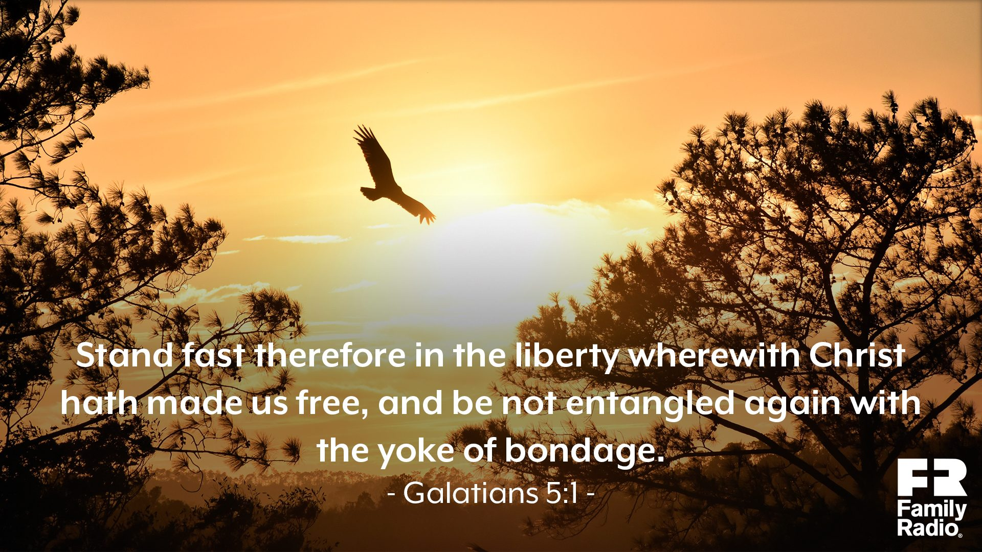 """Stand fast therefore in the liberty wherewith Christ hath made us free, and be not entangled again with the yoke of bondage."""