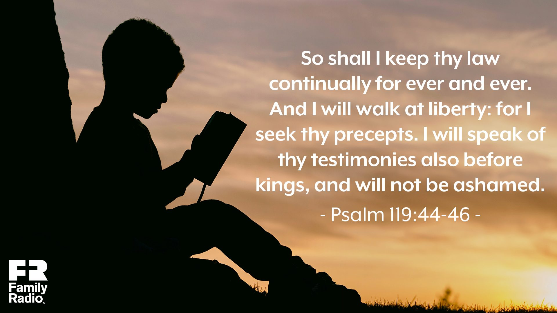"""So shall I keep thy law continually for ever and ever. And I will walk at liberty: for I seek thy precepts. I will speak of thy testimonies also before kings, and will not be ashamed."""