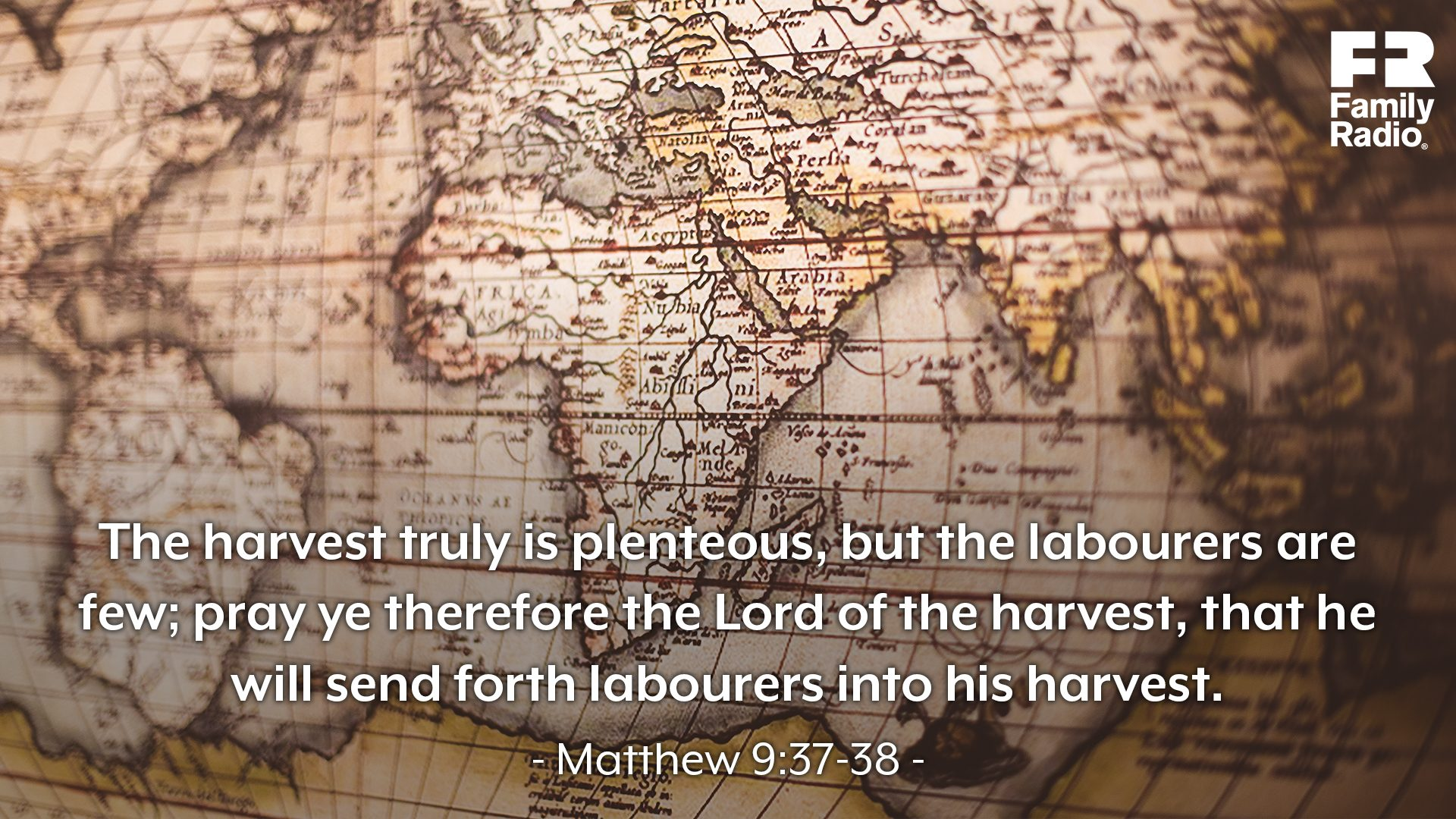 """The harvest truly is plenteous, but the labourers are few; pray ye therefore the Lord of the harvest, that he will send forth labourers into his harvest."""