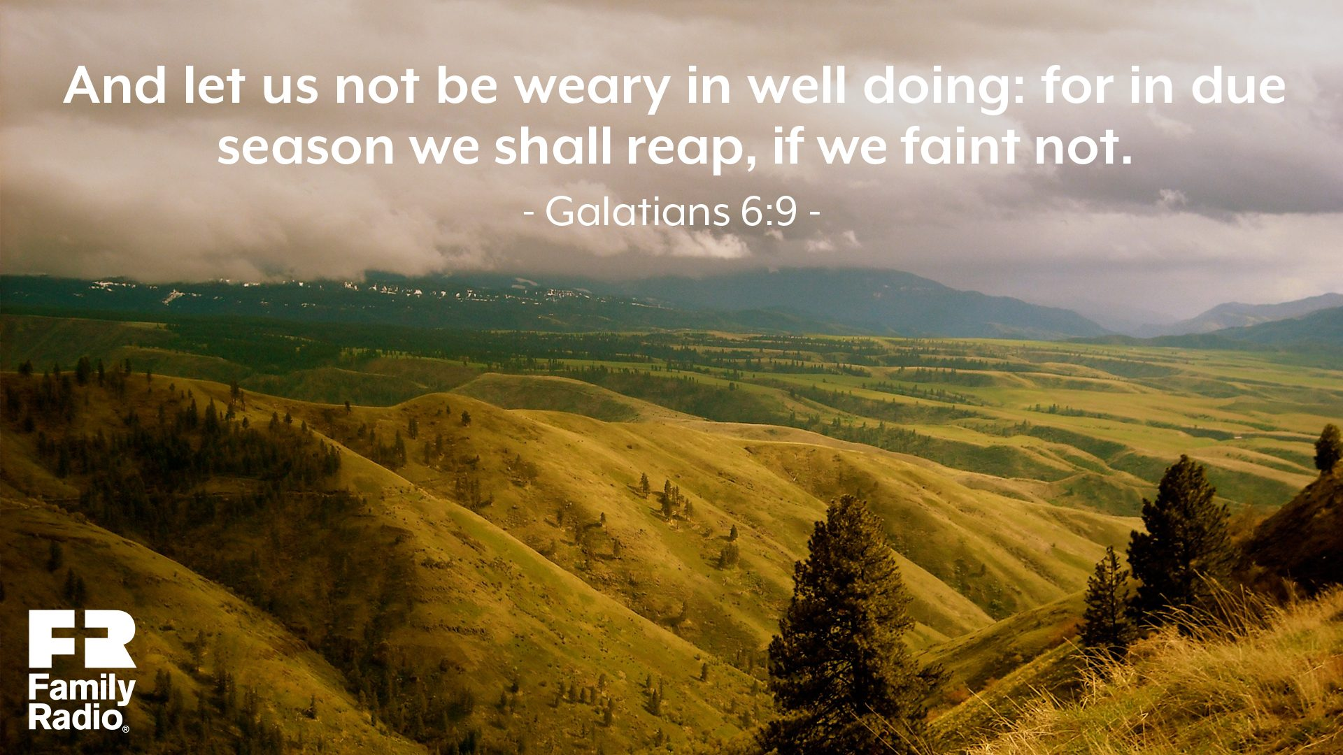 """And let us not be weary in well doing: for in due season we shall reap, if we faint not."""