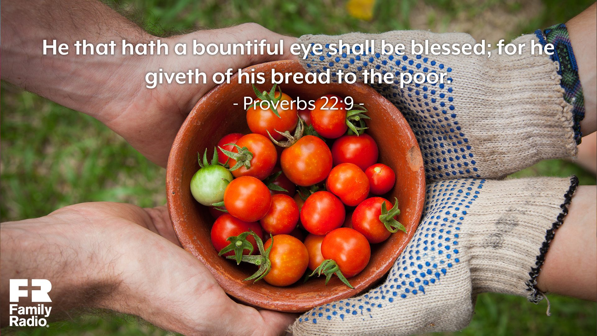 """He that hath a bountiful eye shall be blessed; for he giveth of his bread to the poor."""