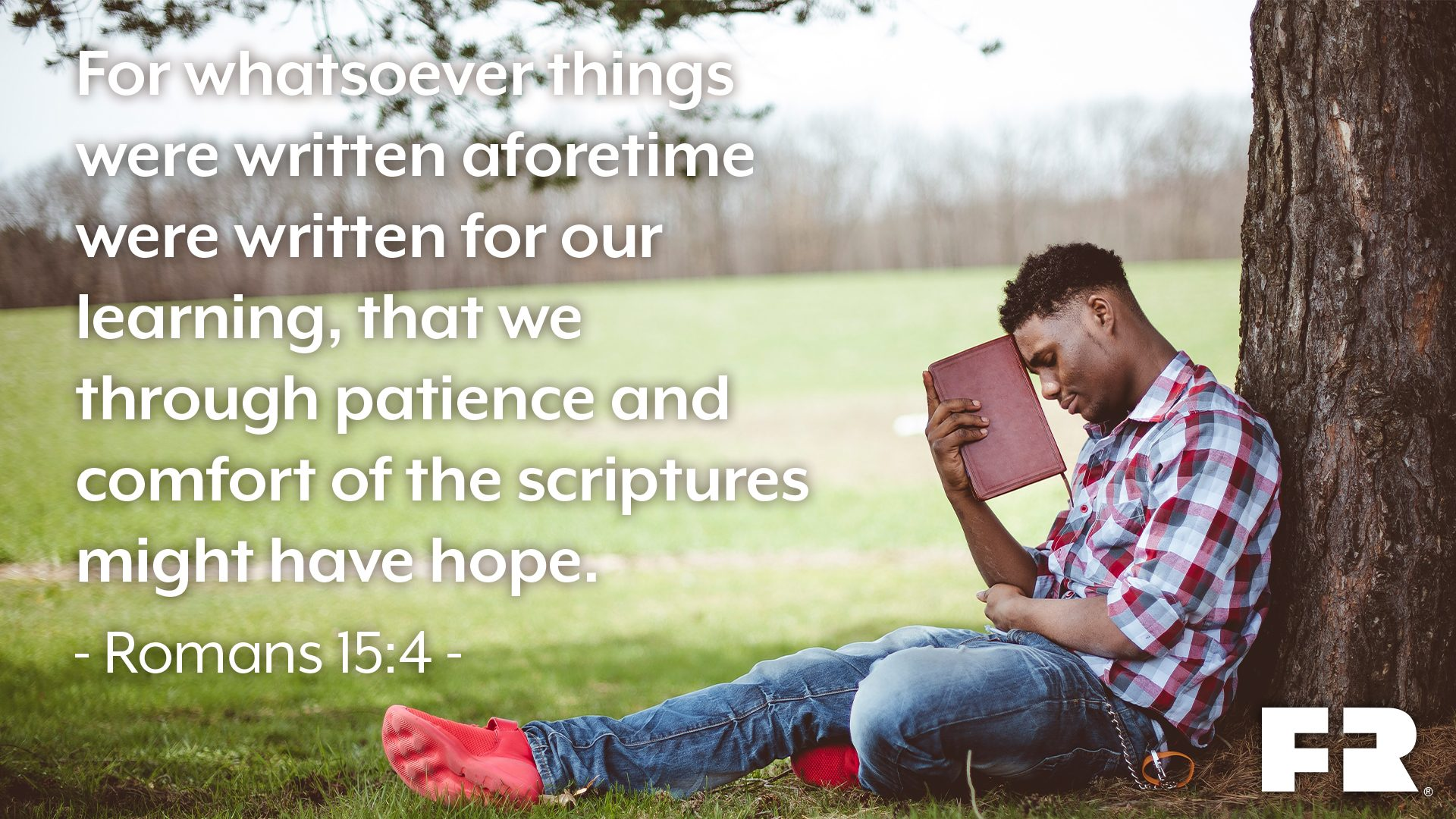 """For whatsoever things were written aforetime were written for our learning, that we through patience and comfort of the scriptures might have hope."""