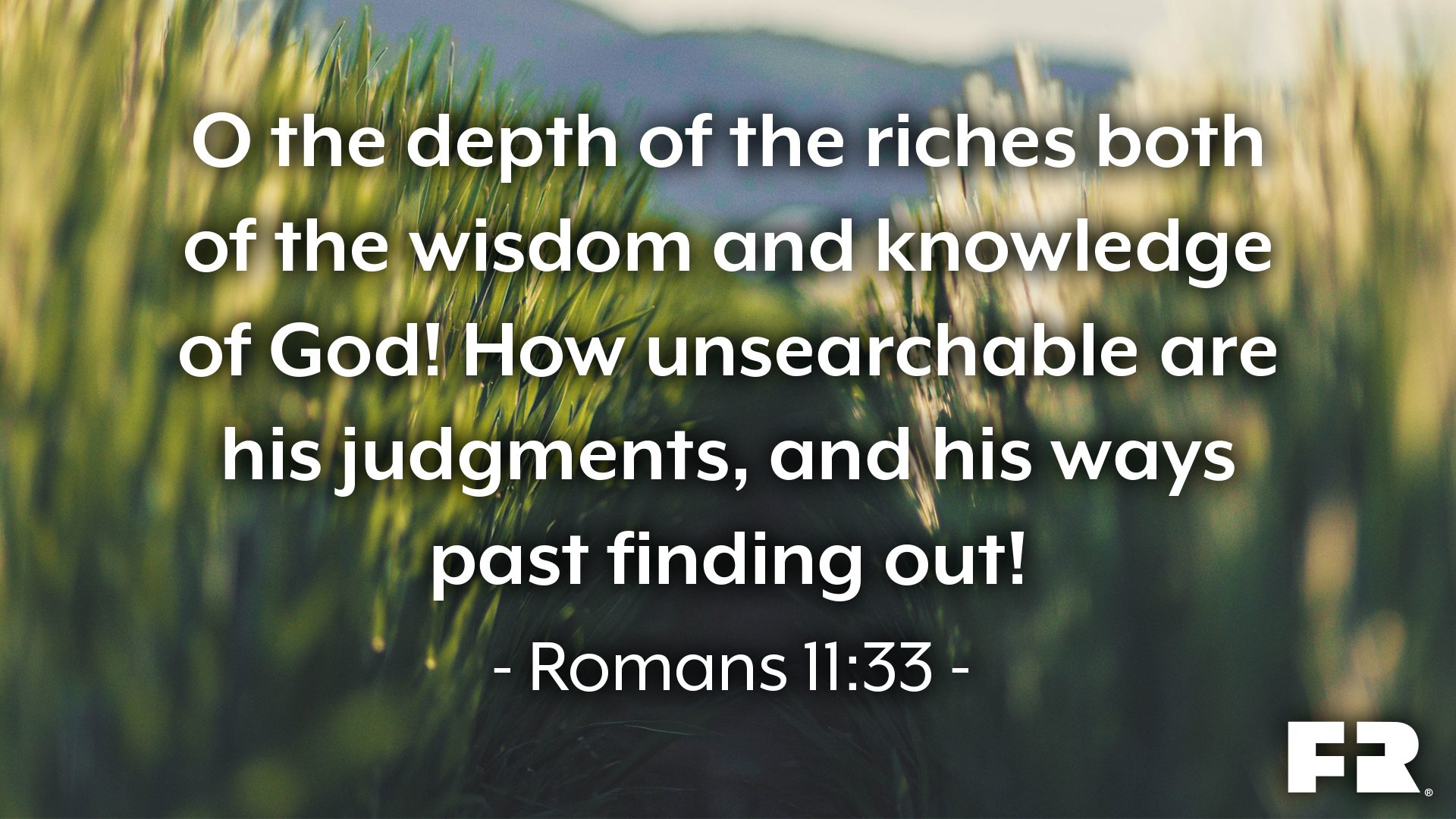 """O the depth of the riches both of the wisdom and knowledge of God! how unsearchable are his judgments, and his ways past finding out!"""